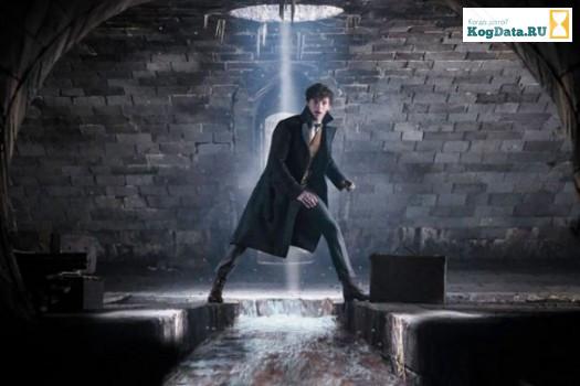 Фанаты Гарри Поттера заметили ошибку в новом трейлере «Фантастических зверей»