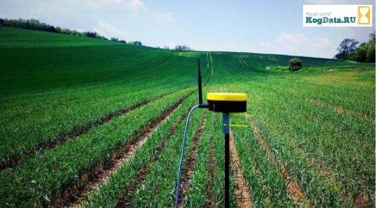 Село и дроны: как технологии меняют украинский агросектор