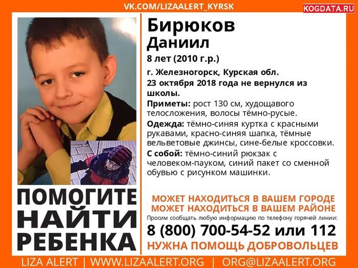 Бирюков Даниил 8 лет г Железногорск последние новости